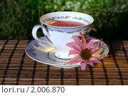 Купить «Лечебный чай и цветок эхинацеи», фото № 2006870, снято 26 июля 2010 г. (c) Татьяна Белова / Фотобанк Лори