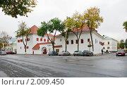 Купить «Подзноевские палаты. Псков», эксклюзивное фото № 2009450, снято 16 сентября 2010 г. (c) Александр Щепин / Фотобанк Лори
