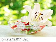 Купить «Летний натюрморт с лилией», фото № 2011326, снято 13 июля 2010 г. (c) Литова Наталья / Фотобанк Лори
