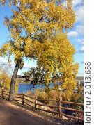 Осенний  пейзаж. Плес. Стоковое фото, фотограф ElenArt / Фотобанк Лори