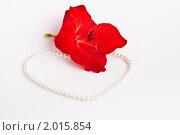 Жемчужное сердце и красный цветок. Стоковое фото, фотограф Анастасия Шелестова / Фотобанк Лори