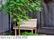 Лавка под рябиной. Стоковое фото, фотограф Евгений Безгодов / Фотобанк Лори