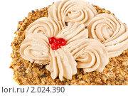 Купить «Вкусный торт», фото № 2024390, снято 24 июня 2010 г. (c) Jan Jack Russo Media / Фотобанк Лори