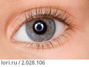 Купить «Левый  глаз ребенка с длинными ресницами», фото № 2028106, снято 16 ноября 2009 г. (c) Losevsky Pavel / Фотобанк Лори