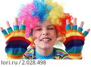 Купить «Маленький мальчик в клоунском парике и разноцветных перчатках», фото № 2028498, снято 10 февраля 2010 г. (c) Losevsky Pavel / Фотобанк Лори