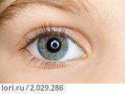 Купить «Детский глаз крупным планом», фото № 2029286, снято 11 декабря 2009 г. (c) Losevsky Pavel / Фотобанк Лори
