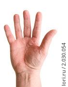 Купить «Цифра пять показанная пальцами на белом фоне», фото № 2030054, снято 3 февраля 2010 г. (c) Никита Жигелев / Фотобанк Лори