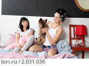 Купить «Девушки играют с собакой, сидя на диване», фото № 2031030, снято 6 сентября 2010 г. (c) Elena Rostunova / Фотобанк Лори