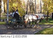 Повозка с лошадками. Стоковое фото, фотограф Елена Ильина / Фотобанк Лори