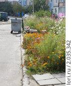 Купить «Городской двор», фото № 2035342, снято 9 октября 2010 г. (c) Олеся Сарычева / Фотобанк Лори