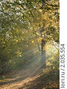 Купить «Волшебный свет», эксклюзивное фото № 2035554, снято 9 октября 2010 г. (c) Валерия Попова / Фотобанк Лори