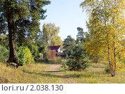 Золотая осень в Разливе. Стоковое фото, фотограф Виталий Фурсов / Фотобанк Лори