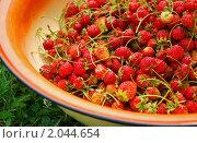 Купить «Садовая клубника в тазу», фото № 2044654, снято 3 июля 2010 г. (c) Светлана Зарецкая / Фотобанк Лори