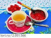Купить «Чашка чая, свежая малина на блюдце и пиала с малиновым вареньем», фото № 2051566, снято 16 июля 2010 г. (c) Алексей Баринов / Фотобанк Лори