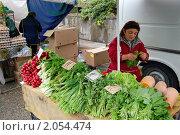 Купить «Прилавок с зеленью и редисом на сельскохозяйственной ярмарке», эксклюзивное фото № 2054474, снято 16 октября 2010 г. (c) Анна Мартынова / Фотобанк Лори