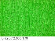 Купить «Зеленые обои», фото № 2055170, снято 16 октября 2010 г. (c) Александр Романов / Фотобанк Лори