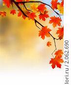 Купить «Осенняя листва», иллюстрация № 2062690 (c) Владимир / Фотобанк Лори