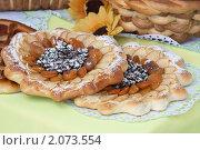Купить «Два пирога с яблоками, курагой и изюмом», эксклюзивное фото № 2073554, снято 27 июня 2010 г. (c) Шичкина Антонина / Фотобанк Лори