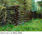 Купить «Забор из бревен в лесу», фото № 2082086, снято 20 августа 2010 г. (c) Andrey M / Фотобанк Лори