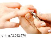 Купить «Маникюр», фото № 2082770, снято 14 марта 2010 г. (c) Константин Тавров / Фотобанк Лори