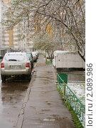 Купить «Снег идет (Первый снежок)», эксклюзивное фото № 2089986, снято 29 октября 2010 г. (c) Валерия Попова / Фотобанк Лори