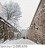Купить «Зимний Таллин», фото № 2095610, снято 11 января 2010 г. (c) Игорь Соколов / Фотобанк Лори