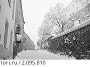Купить «Зимний Таллин», фото № 2095810, снято 11 января 2010 г. (c) Игорь Соколов / Фотобанк Лори