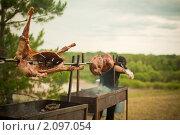 Жареный на вертеле барашек. Стоковое фото, фотограф Моисеева Ирина / Фотобанк Лори
