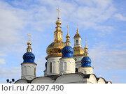 Купола (2010 год). Редакционное фото, фотограф Игорь Опойков / Фотобанк Лори