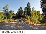 Купить «Дорога на вершину Мамдзышха», фото № 2098758, снято 20 сентября 2010 г. (c) Охотникова Екатерина *Фототуристы* / Фотобанк Лори