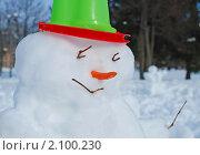 Купить «Снеговик с ярким ведром на голове крупный план», фото № 2100230, снято 25 февраля 2010 г. (c) Светлана Зарецкая / Фотобанк Лори