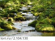 Купить «Горный ручей и мшистый камни», фото № 2104130, снято 21 июля 2009 г. (c) Сергей Салдаев / Фотобанк Лори