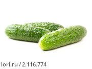 Купить «Три свежих зеленых огурца на белом с каплями воды», фото № 2116774, снято 1 июля 2010 г. (c) Бурков Андрей / Фотобанк Лори