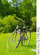 Велосипед в солнечном парке. Стоковое фото, фотограф Сергей Петерман / Фотобанк Лори