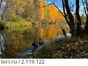 Зеркальное осеннее отражение. Стоковое фото, фотограф Николай Решетников / Фотобанк Лори