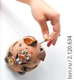 Женская рука опускает монету в копилку. Стоковое фото, фотограф Роман Кокорев / Фотобанк Лори
