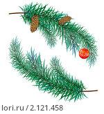 Купить «Еловая ветка с шишками и новогодней игрушкой», иллюстрация № 2121458 (c) Алексей Григорьев / Фотобанк Лори