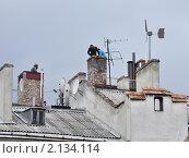 Купить «Город и горожане. Трубочисты на крыше дома», фото № 2134114, снято 20 мая 2010 г. (c) Галина  Горбунова / Фотобанк Лори