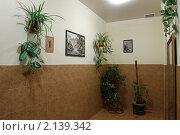 Ухоженный подъезд (2010 год). Редакционное фото, фотограф Дмитрий Неумоин / Фотобанк Лори