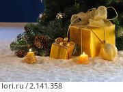 Купить «Украшенная новогодняя елка и подарки», фото № 2141358, снято 13 ноября 2010 г. (c) Литова Наталья / Фотобанк Лори