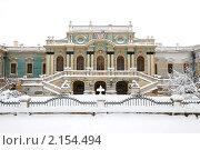 Купить «Мариинский (царский) дворец в Киеве. Зима», фото № 2154494, снято 12 ноября 2007 г. (c) Николай Голицынский / Фотобанк Лори