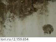Купить «Текстура бетонной стены», фото № 2159654, снято 15 января 2009 г. (c) Иванова Марина / Фотобанк Лори