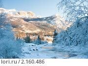 Купить «Зимний пейзаж», фото № 2160486, снято 18 ноября 2010 г. (c) Виталий Романович / Фотобанк Лори