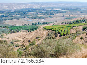Купить «Израиль. Сельскохозяйственные угодья», фото № 2166534, снято 12 октября 2010 г. (c) Зобков Георгий / Фотобанк Лори