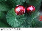 Купить «Новогодние шары  на рождественской ёлке», фото № 2170606, снято 27 ноября 2010 г. (c) Ольга Липунова / Фотобанк Лори