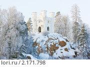 Зимняя сказка, парк Монрепо, Выборг. Редакционное фото, фотограф Юлия Колтырина / Фотобанк Лори