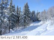Зимний пейзаж (2009 год). Стоковое фото, фотограф Марина Когута / Фотобанк Лори