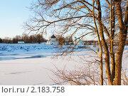 Вид на Мирожский мужской монастырь сквозь ветви деревьев (2010 год). Стоковое фото, фотограф Анатолий Баранов / Фотобанк Лори