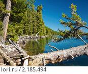 Купить «Алтай. Озеро Нижнее Мультинское», фото № 2185494, снято 21 августа 2010 г. (c) Andrey M / Фотобанк Лори
