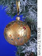 Купить «Елочная игрушка», фото № 2190538, снято 11 декабря 2009 г. (c) Целоусов Дмитрий Геннадьевич / Фотобанк Лори